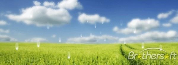 Rain Animated Desktop Wallpaper Dream Rain Animated Desktop Wallpaper 600x220