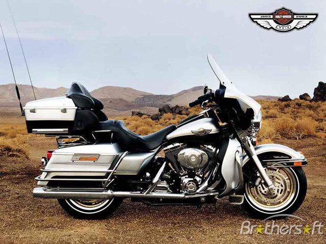 Harley davidson sassy performance eyewear 640x480