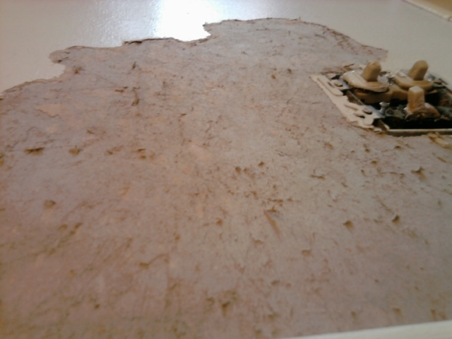 Fuzzy drywall after removing wallpaper 640x480