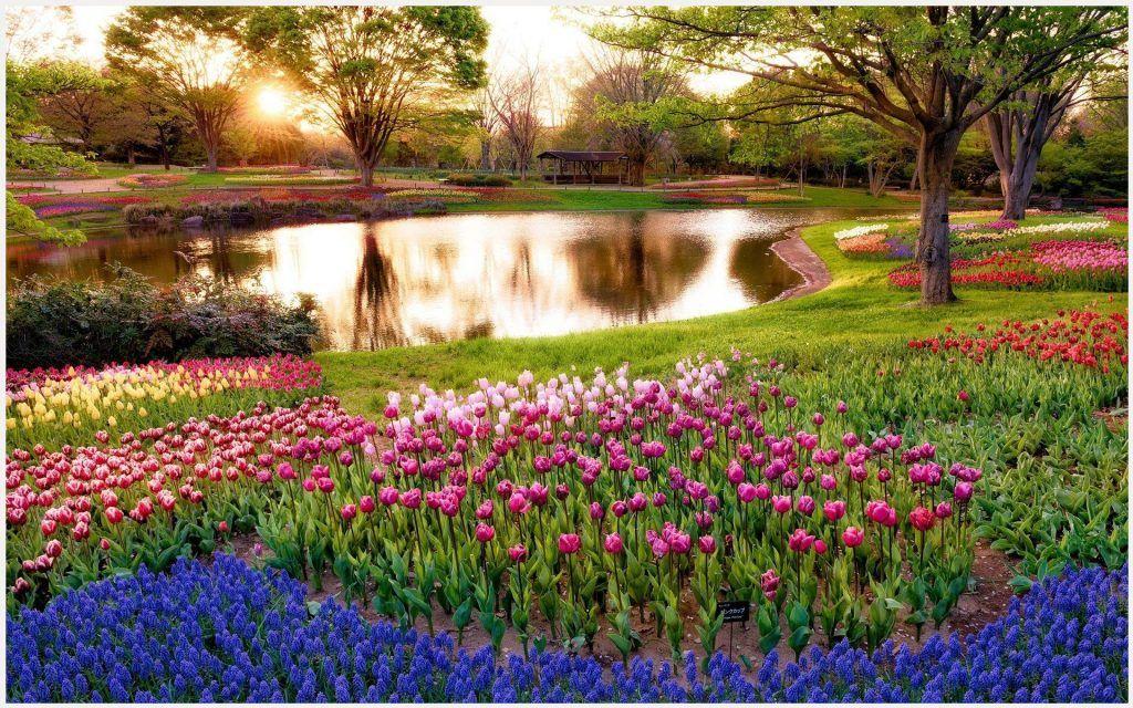 Flowers Garden Wallpaper 3d flower garden wallpaper beautiful 1024x640