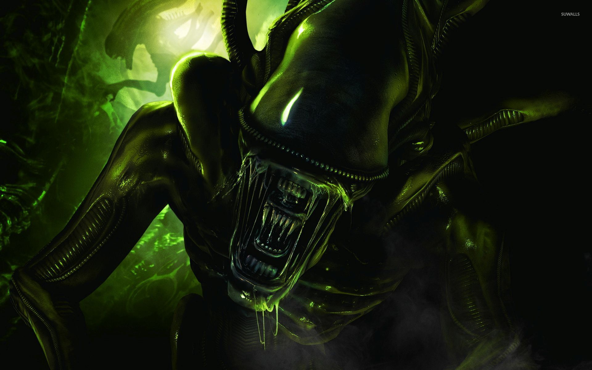 Scary green alien wallpaper   Game wallpapers   54132 1920x1200