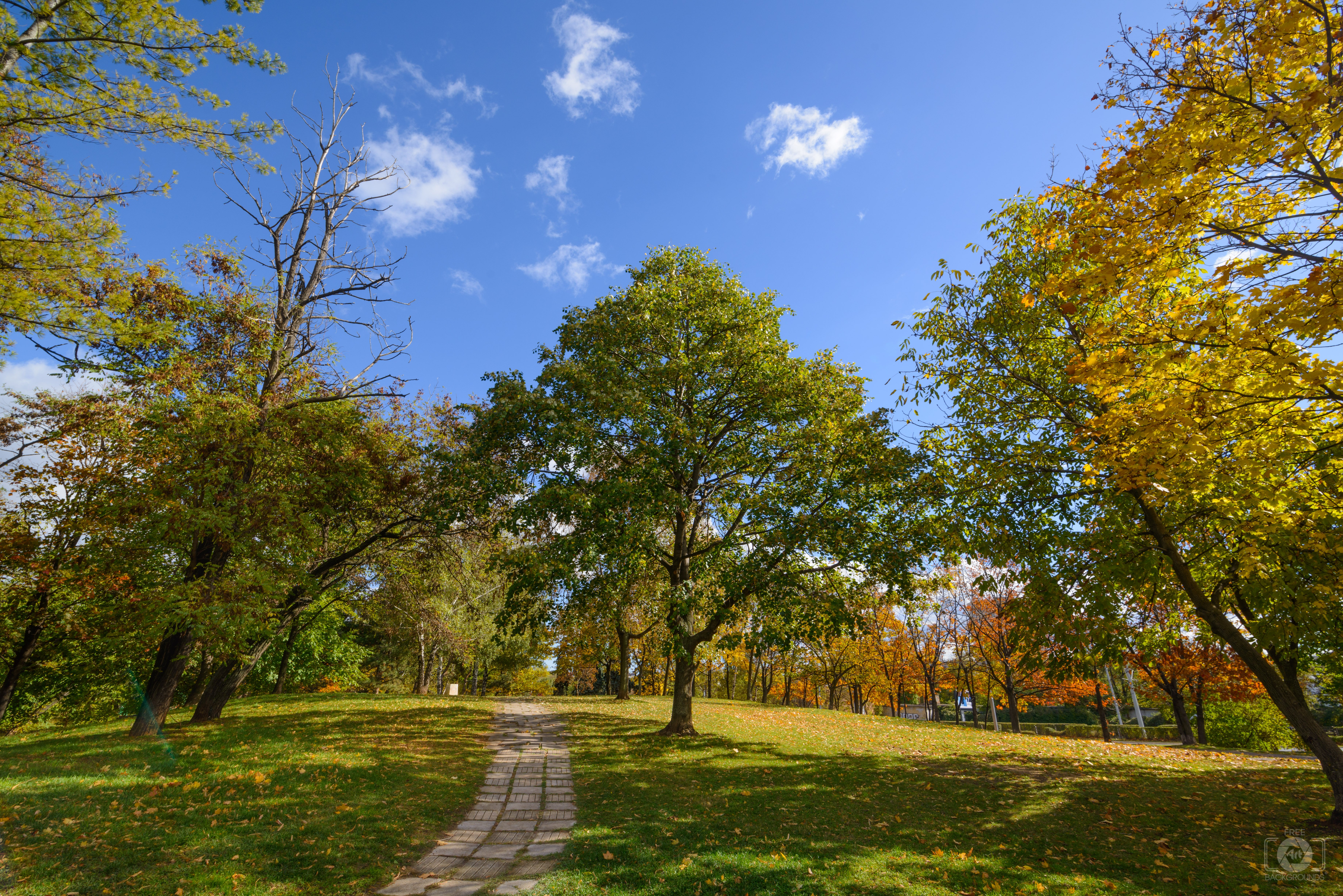 Autumn Park Trail Background   High quality Backgrounds 7360x4912