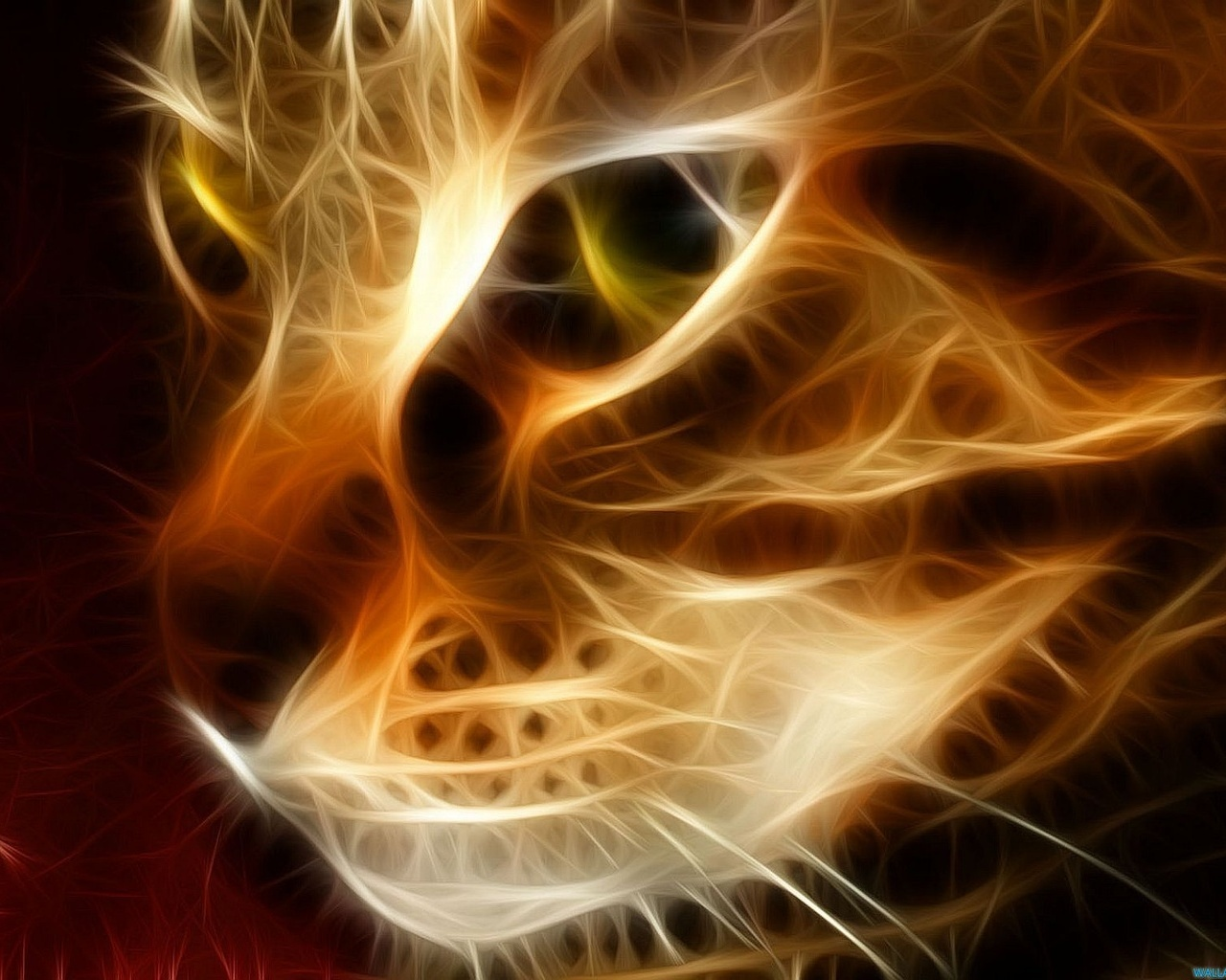 Pictures 3d graphics Cat Desktop Wallpapers and Pictures wallpapers 1280x1024