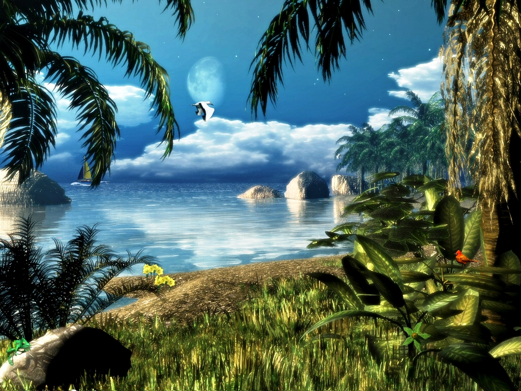 For Desktop Beach photos 3D Animated Background For Desktop Wallpaper 1024x768
