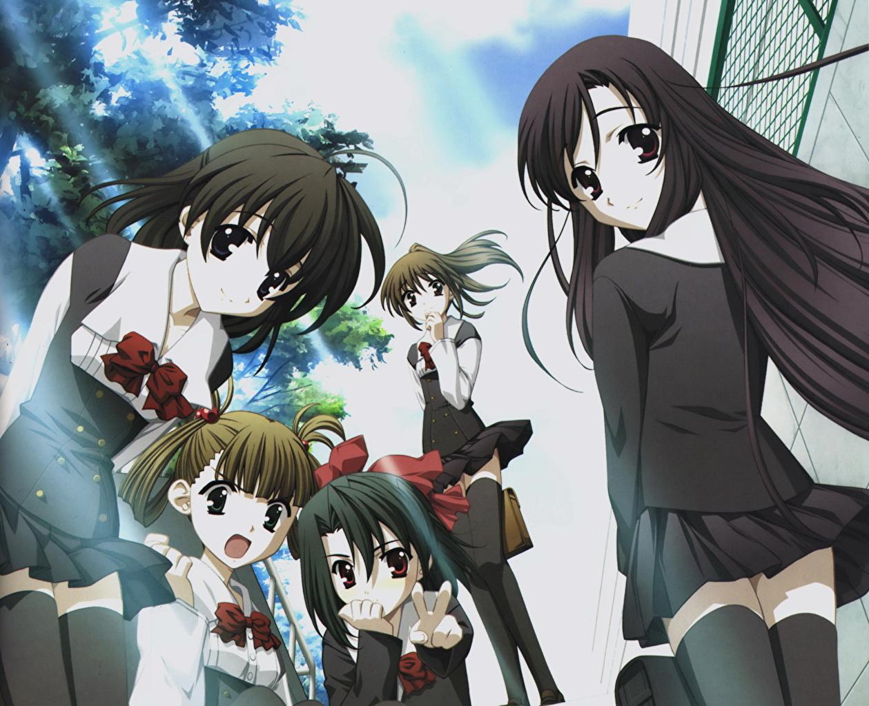 Desktop Wallpapers School Days Anime young woman 1259x1024
