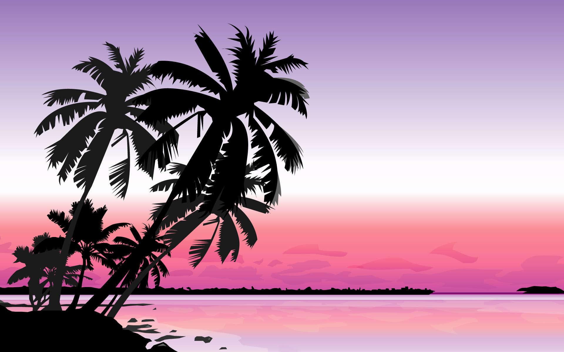 palm tree hd wallpapers 10  AMB 1920x1200