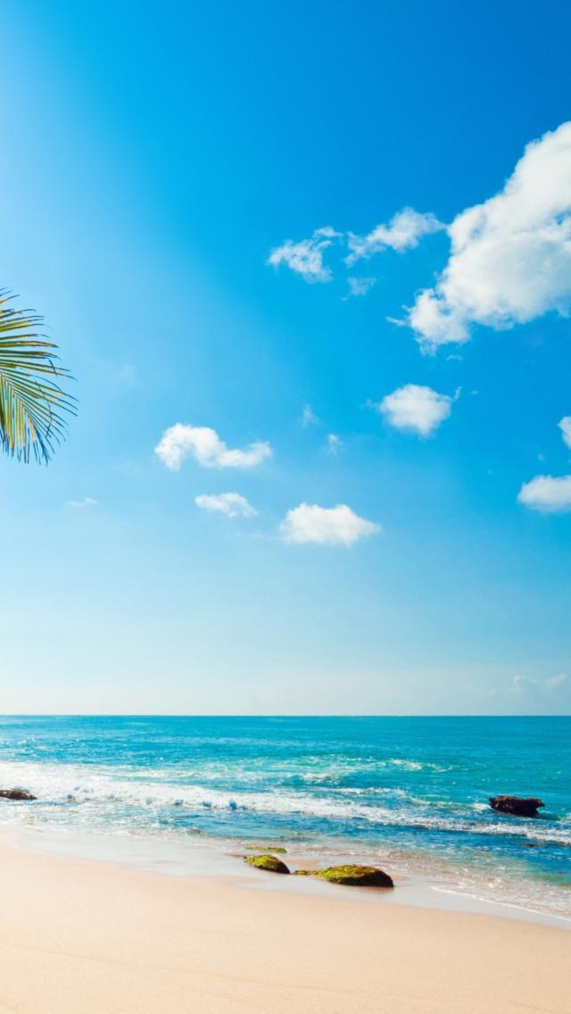 43 Tropical Beach Phone Wallpaper On Wallpapersafari