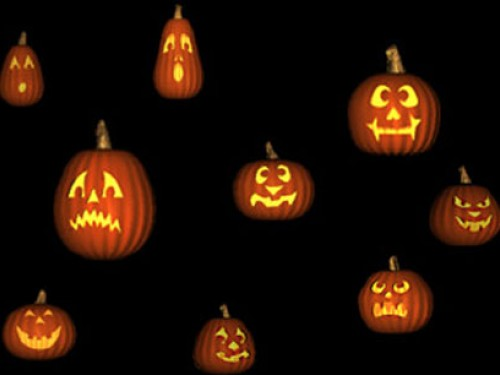 pumpkins screensaver screensavers download halloween pumpkins 500x375