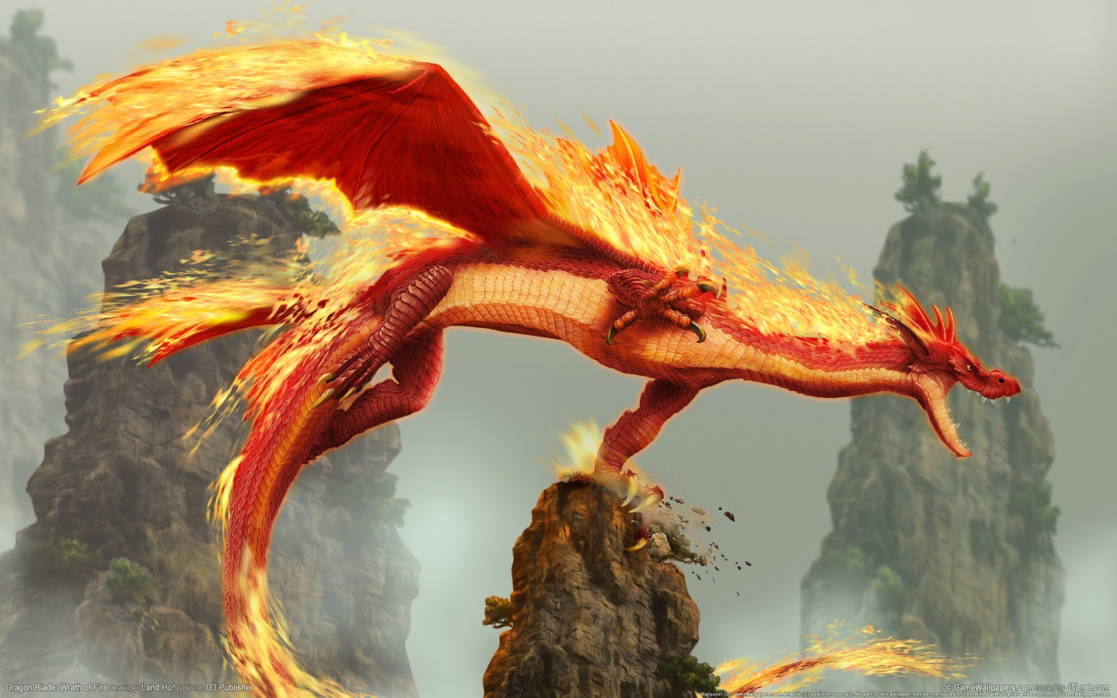 HD fire wallpapers wallpaper for backgrounds wallpapers 1600x1000
