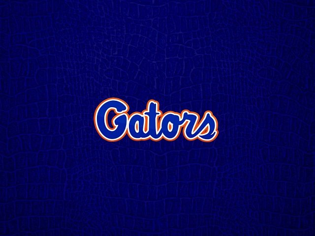 Florida Gators Wallpaper   Android Forums at AndroidCentralcom 640x480