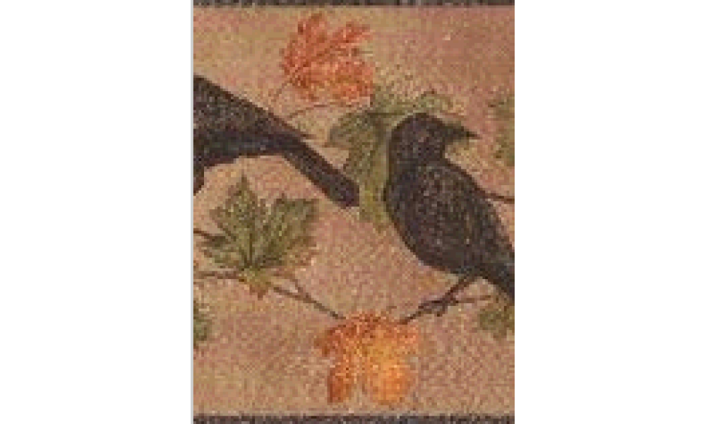 Home Light Brown Bird Wallpaper Border 1000x600