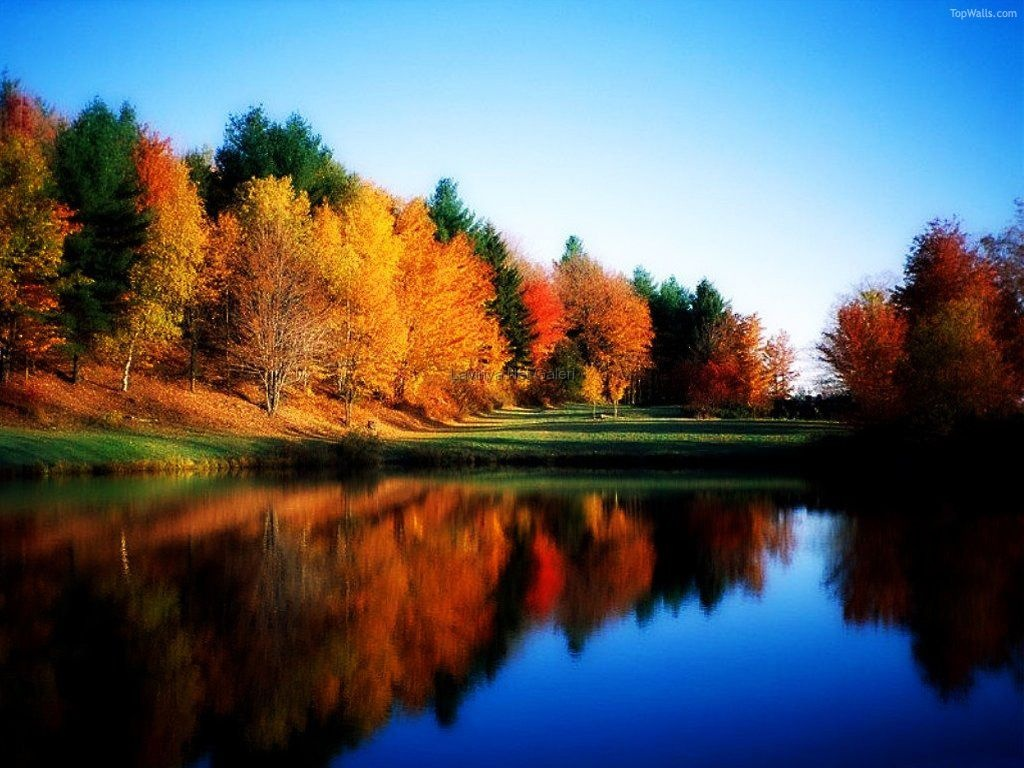 Nature Landscapes Wallpaper And Screensavers iBackgroundWallpaper 1024x768