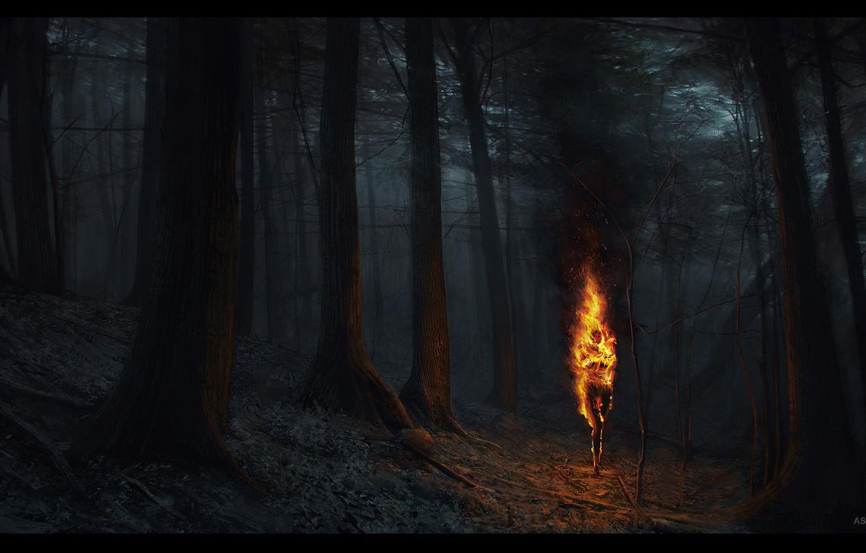 Wallpaper torch ashen falls fire woods nitgh images for desktop 1332x850
