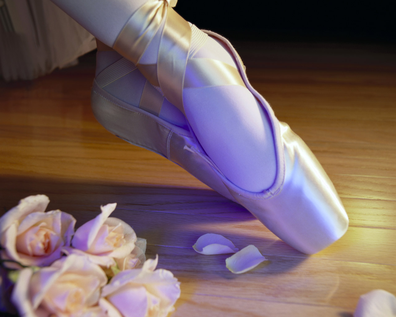 Ballet Shoes Wallpapers Desktop Wallpapers 1280x1024