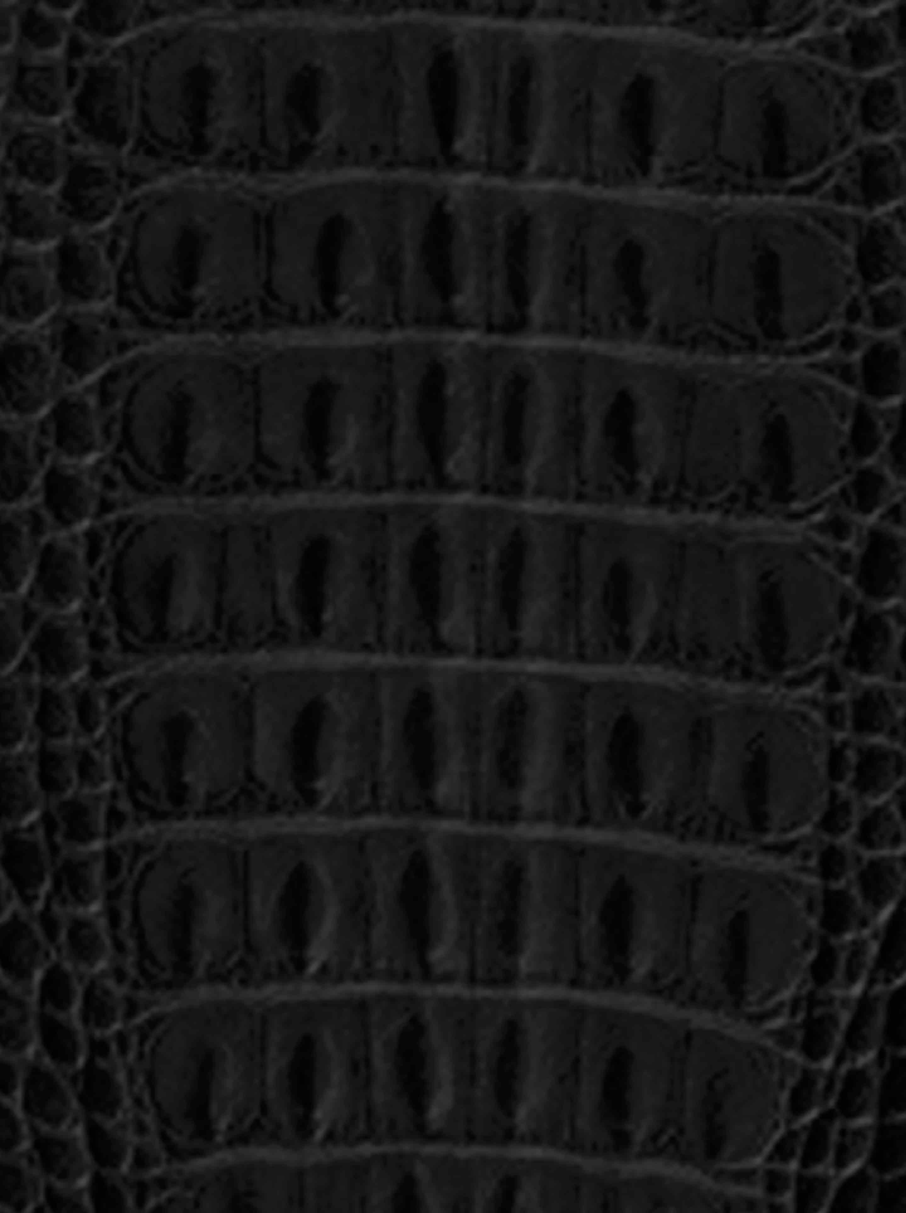 Black Crocodile Wallpaper - WallpaperSafari