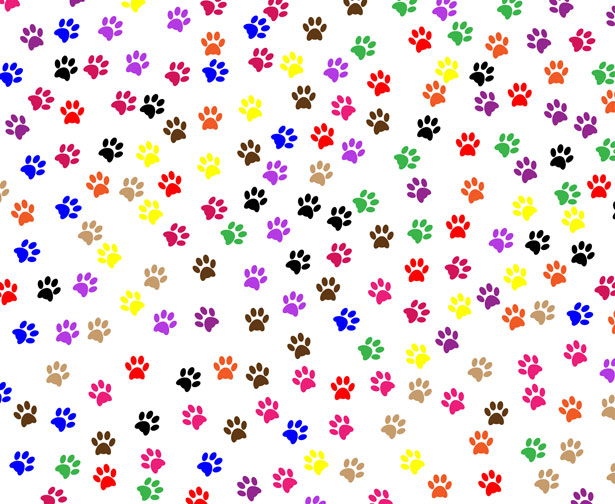 Paw Prints Background Stock Photo   Public Domain Pictures 615x504