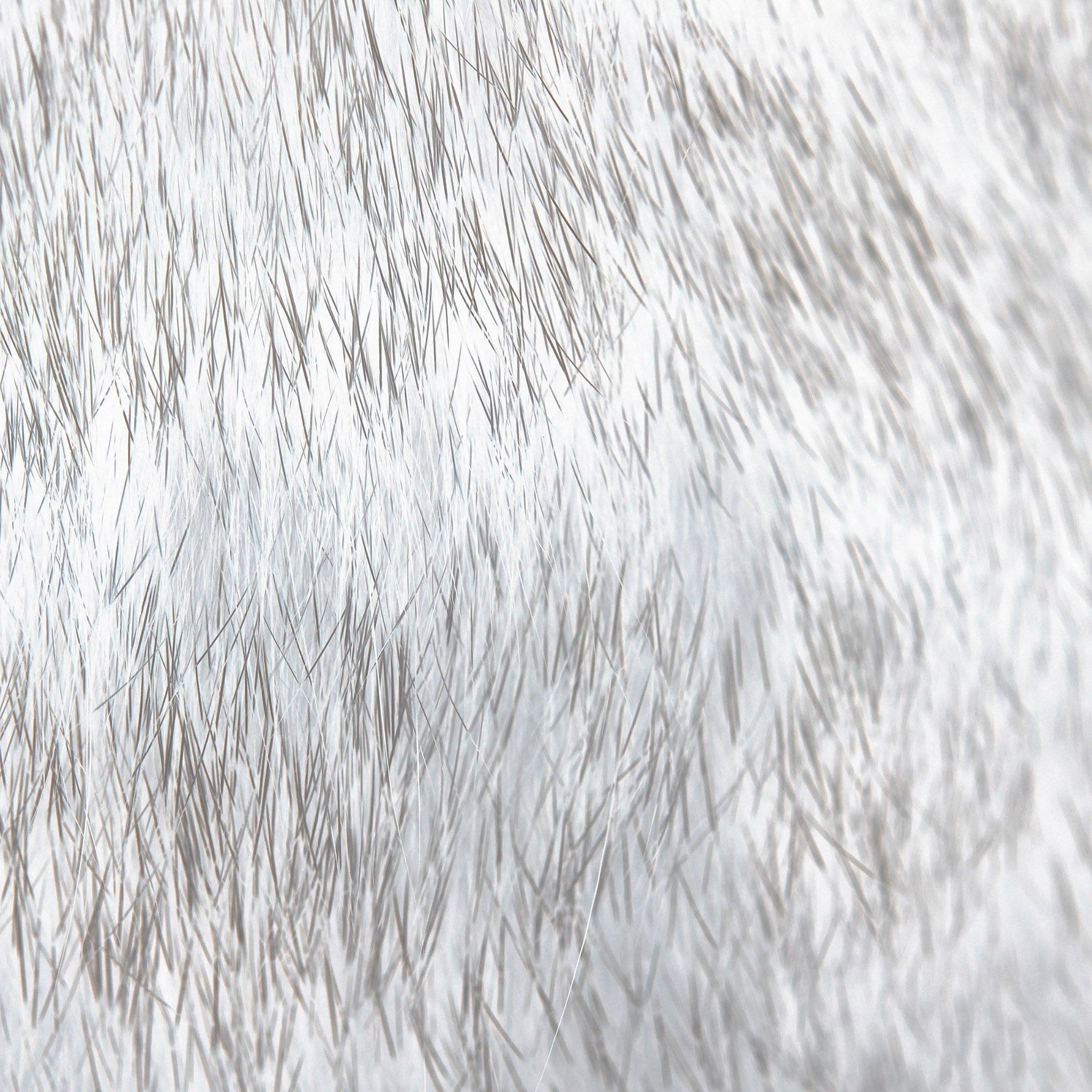 FREEIOS7 cat fur rawrdis white   parallax HD iPhone iPad wallpaper 2048x2048