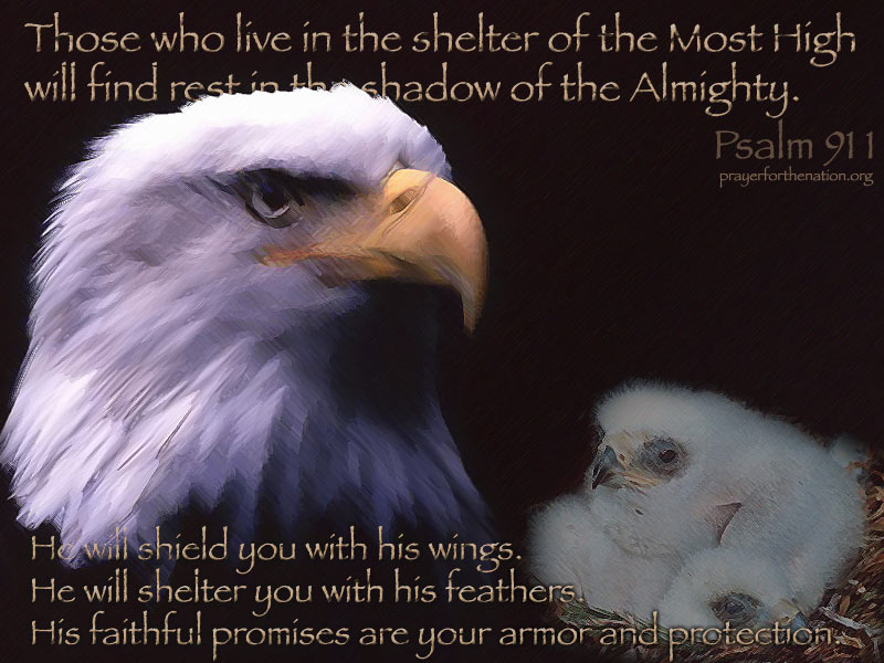 His Wings PowerPoint Background of Psalm 911 4 Heartlight 800x600