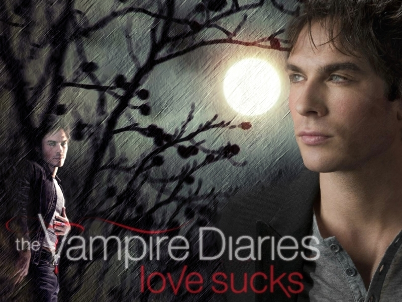 The Vampire Diaries   Damon 2   Team Damon Wallpaper 15811865 800x600