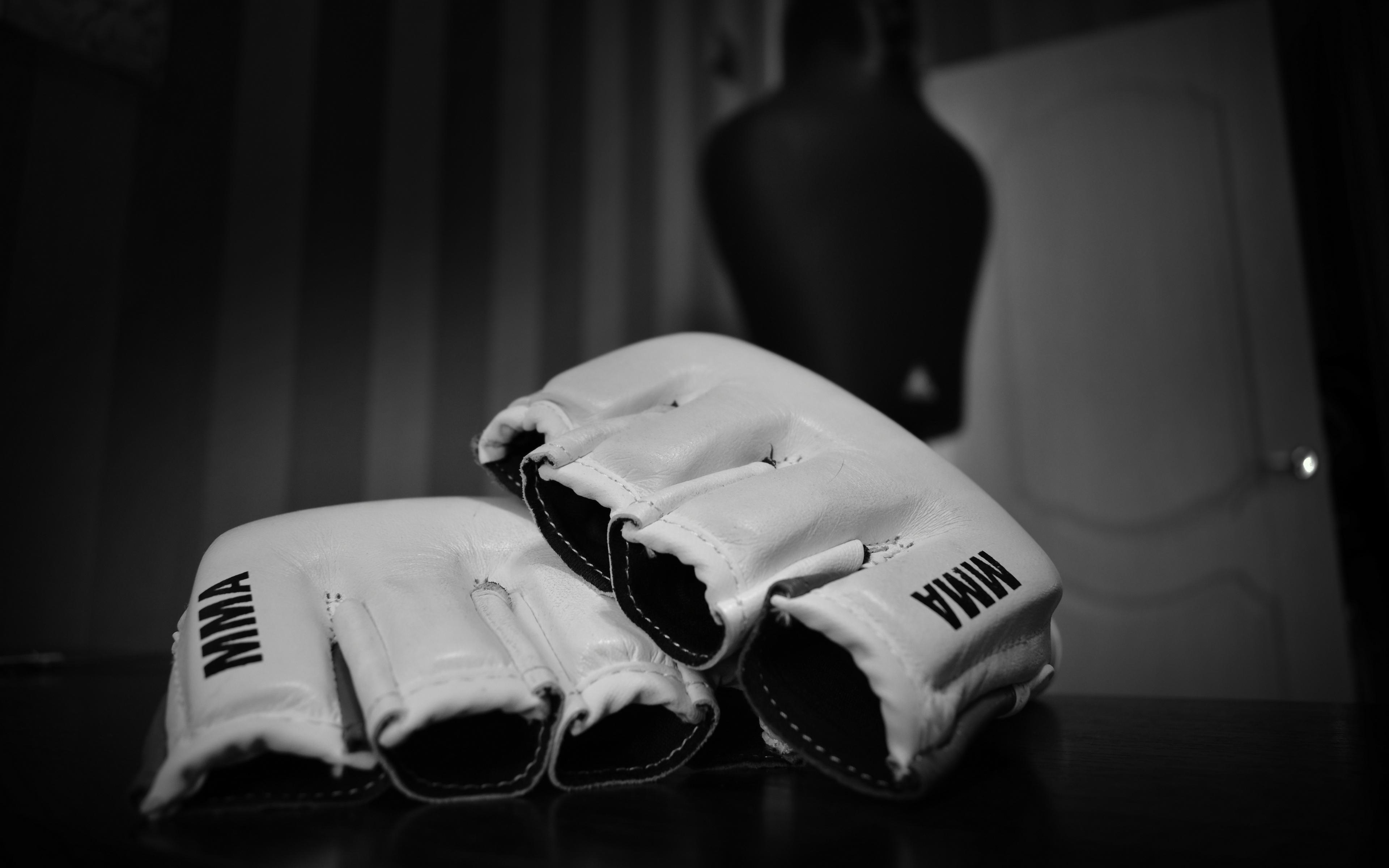 Download wallpaper 3840x2400 mixed martial arts mma wrestling 3840x2400