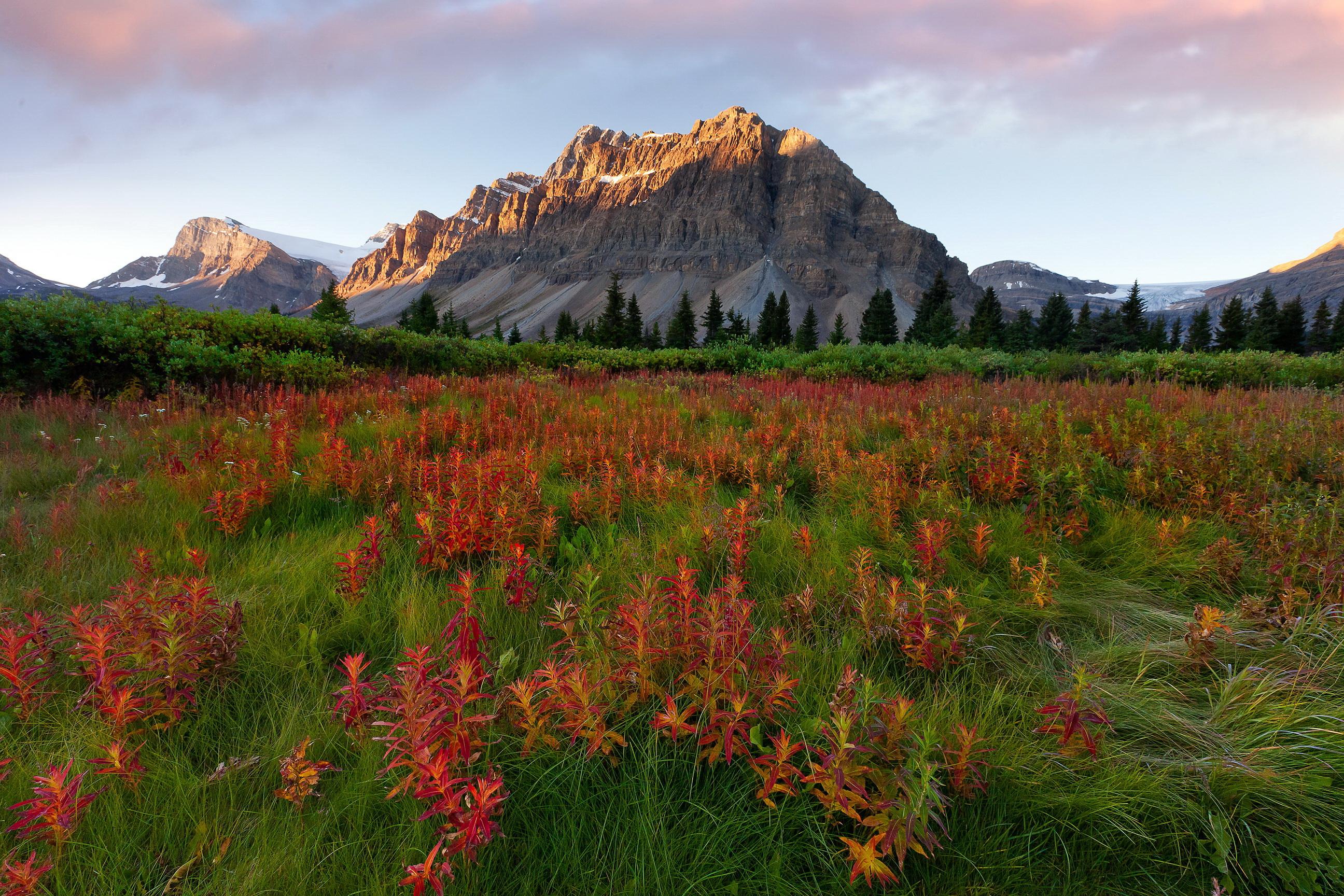 Mountains Scenery Glacier Montana Grass Nature wallpaper 2592x1728 2592x1728