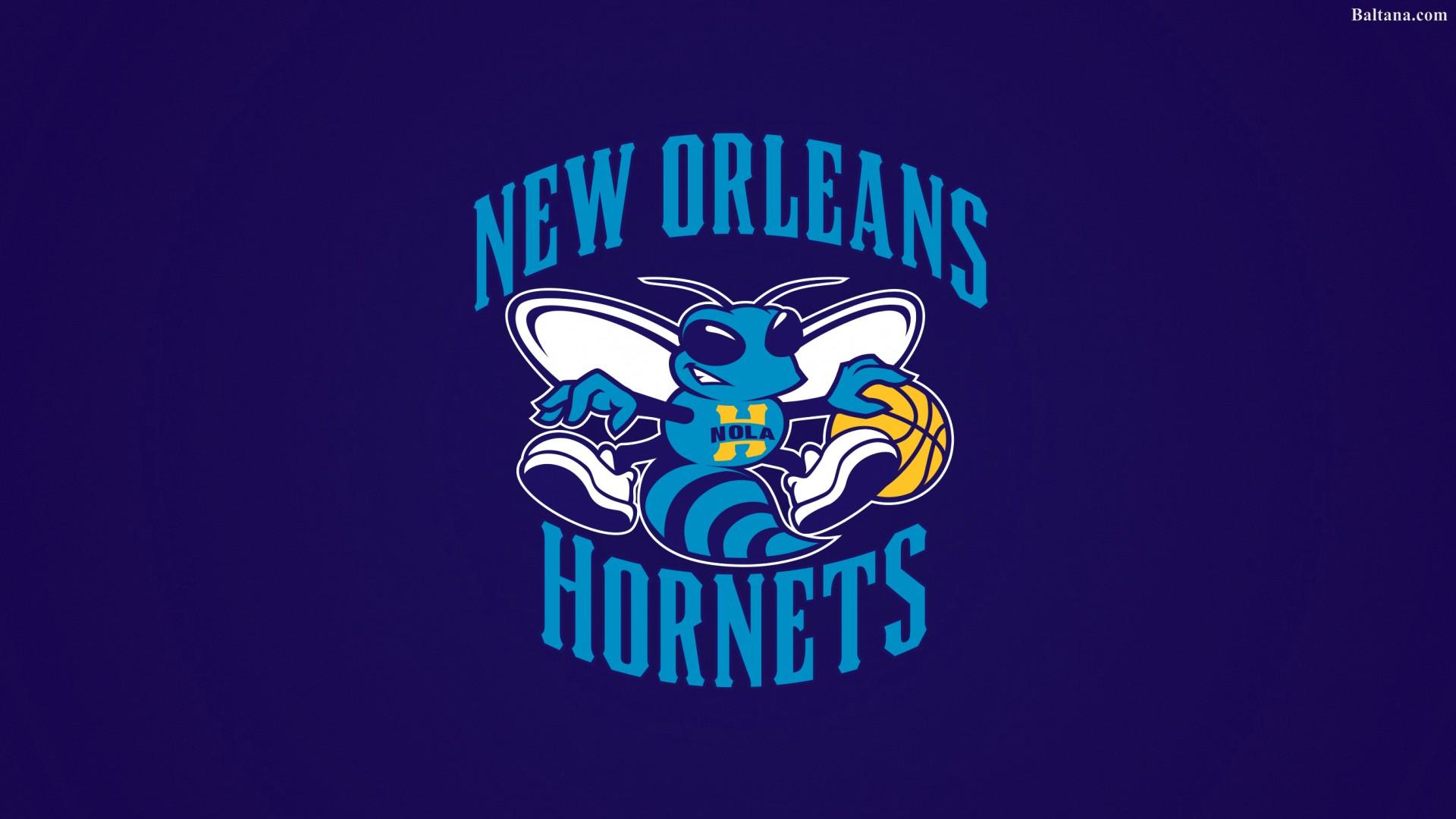 Charlotte Hornets Best Wallpaper 33426   Baltana 1920x1080