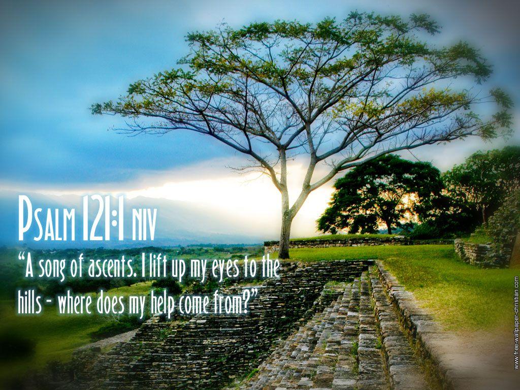 wallpaper psalm 118 24 wallpaper psalm 119 105 wallpaper 1024x768