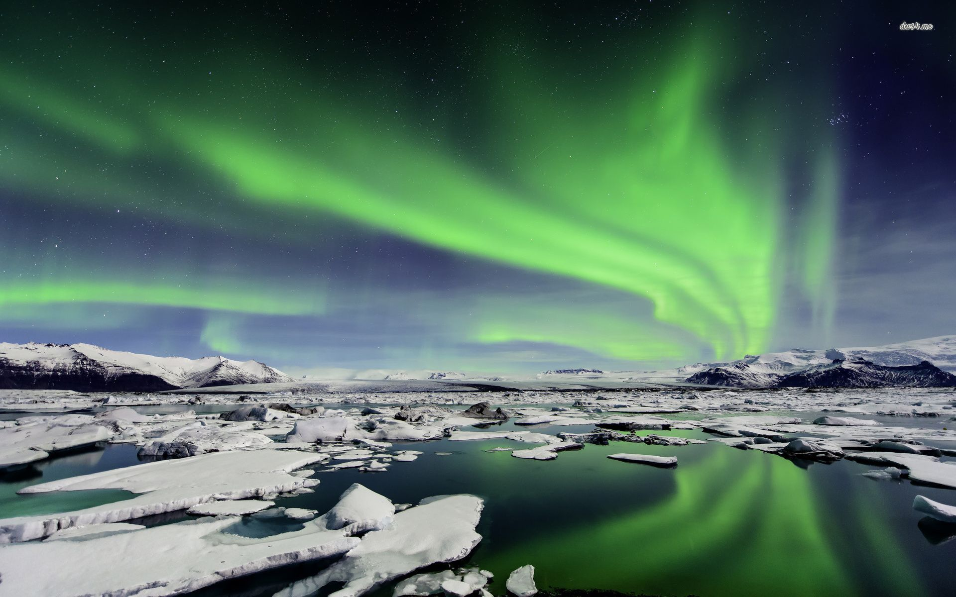 Northern Lights over Iceland wallpaper   Nature wallpapers   19099 1920x1200