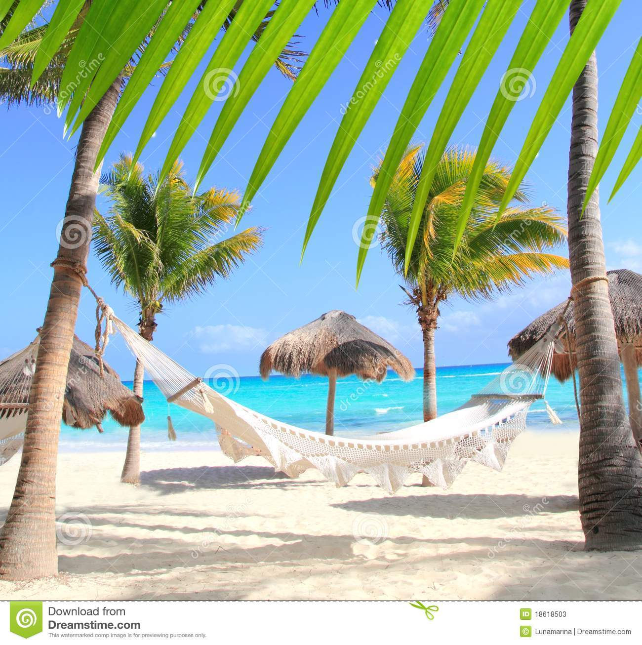 Caribbean beach hammock and palm trees in Mayan Riviera Mexico 1300x1306