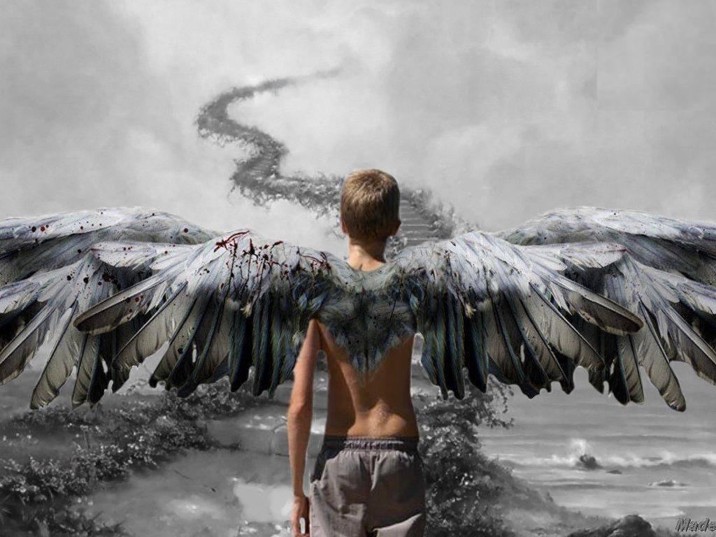 Download Angel Boy Wallpaper Full HD Wallpapers 1024x768