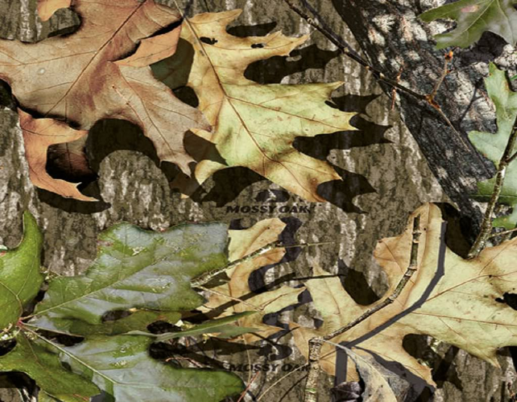 Mossy Oak Camo Wallpaper Wallpapersafari