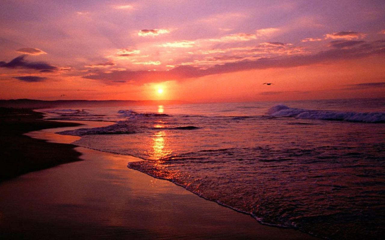 Sunset screensavers wallpapers 04 HD Desktop Wallpapers 1280x800