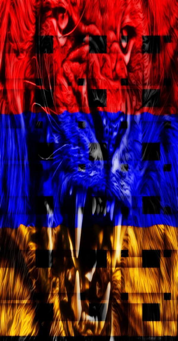 armenia flag HD Wallpapers for smartphones and taplet 600x1148