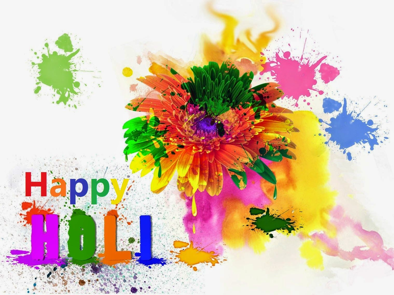 Happy holi wallpaper Happy holi full hd wallpaper Download 1519x1136