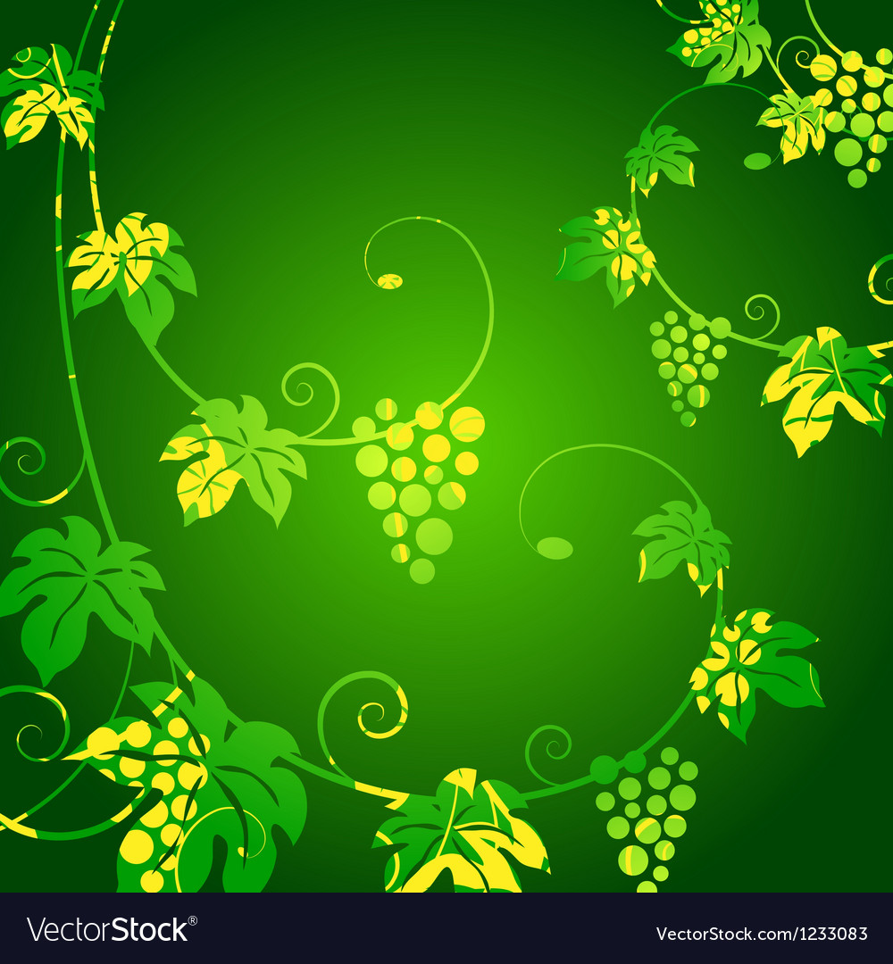 Grape vines green background Royalty Vector Image 1000x1080