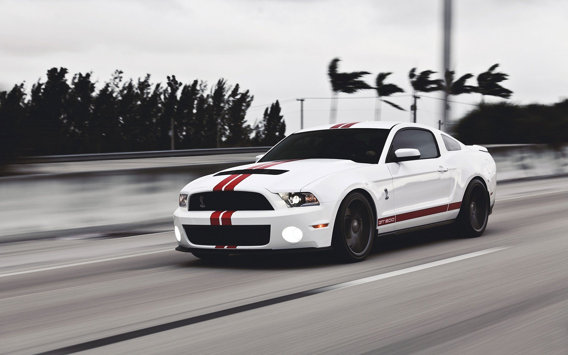 Black And White Cars Ford Ford Mustang Ford Mustang Shelby GT500 1920x1200