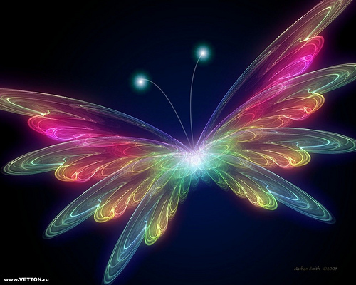 The Fun Starts here cool electric butterfly hd wallpaper 500x400