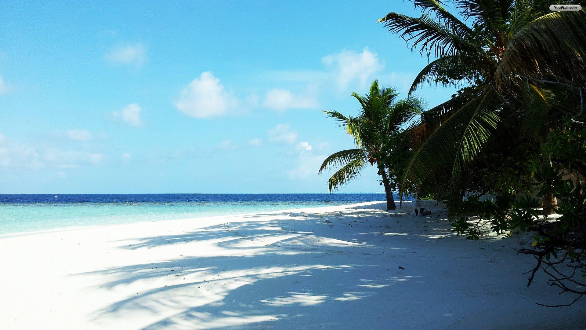 White Sand Beach Wallp...