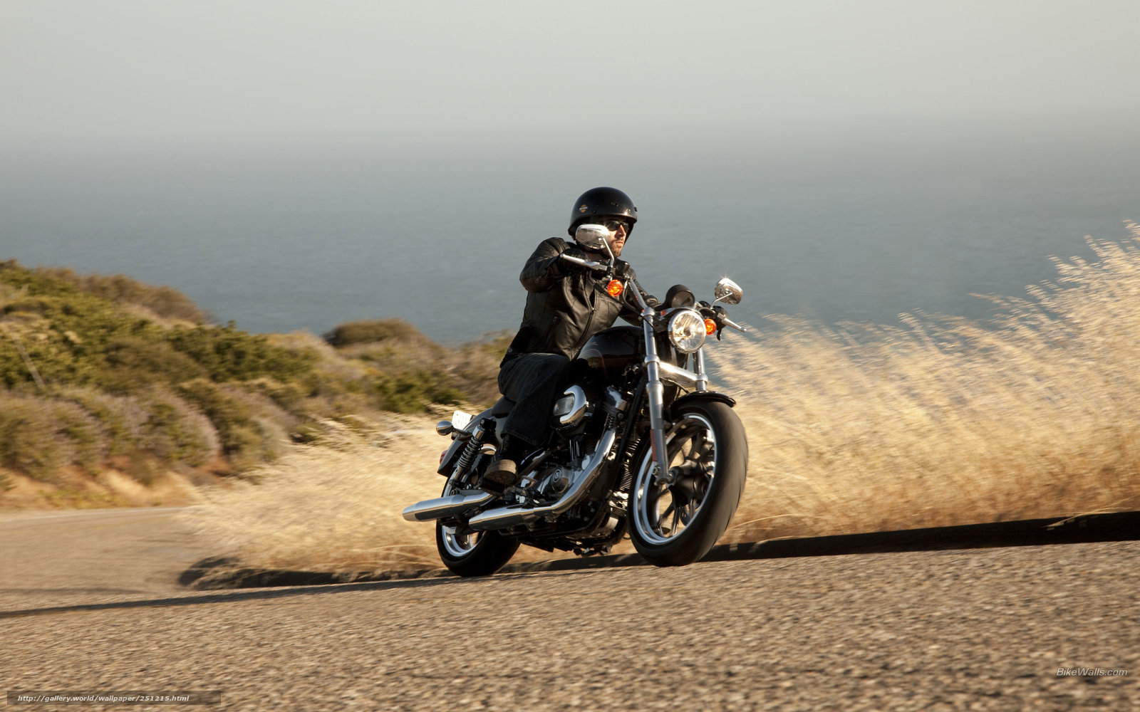 Download wallpaper Harley Davidson Sportster XL 883L 1600x1000
