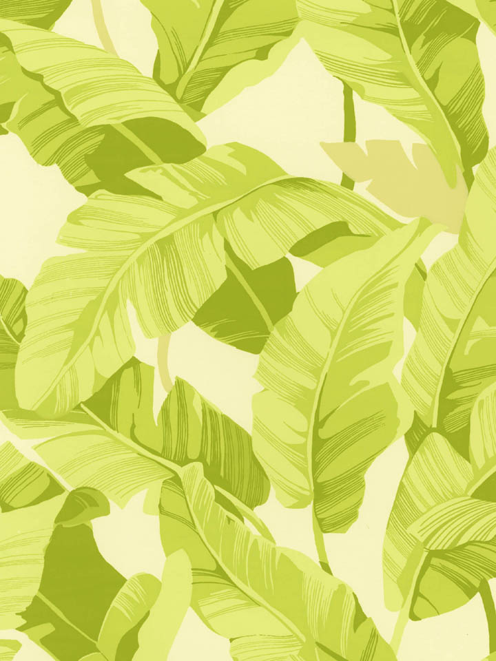 Inspired by the Beverly Hills Hotel Palm Leaf Wallpaper Style Scout 720x960