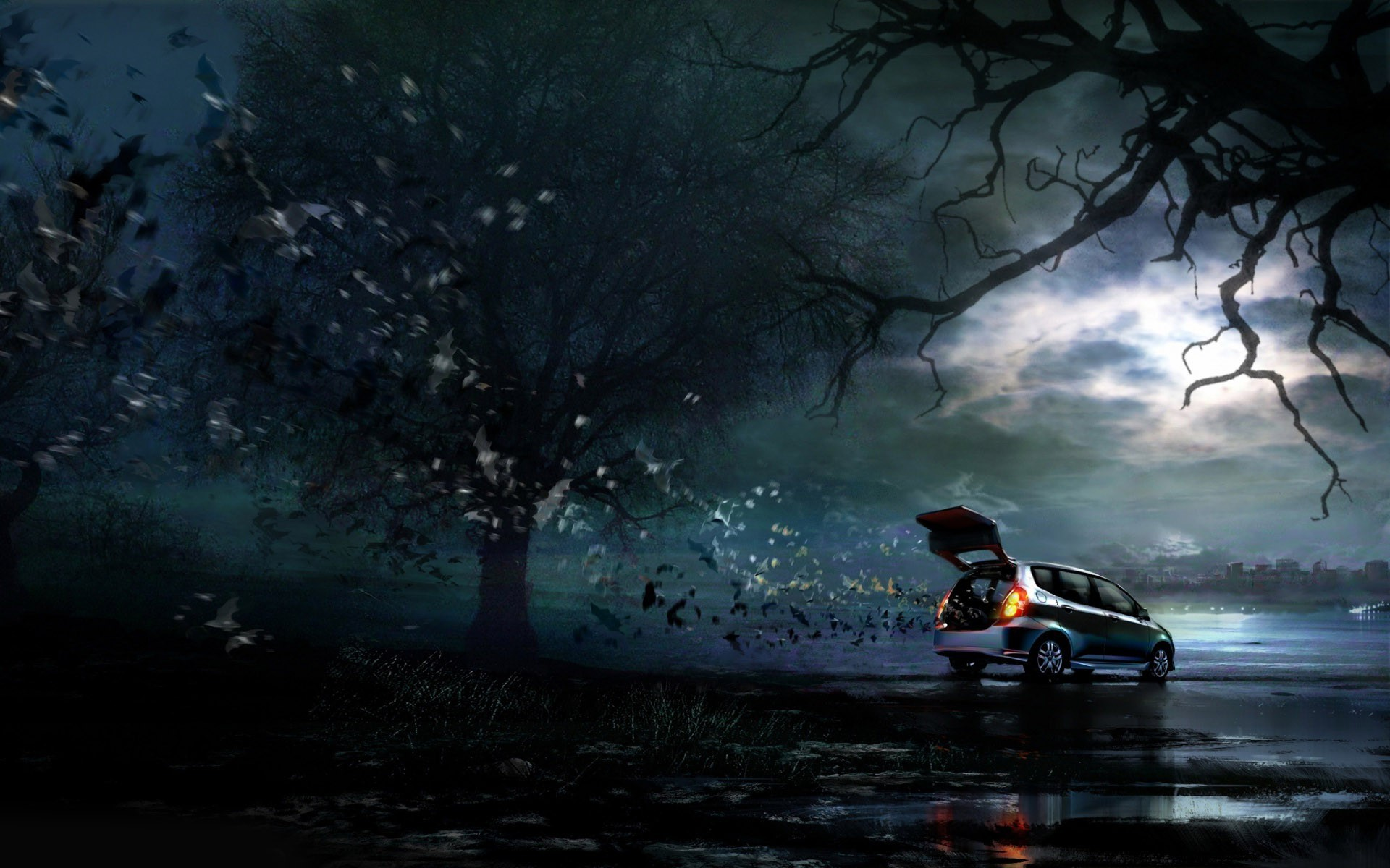 Bats escaping from a car wallpaper 10849 1920x1200