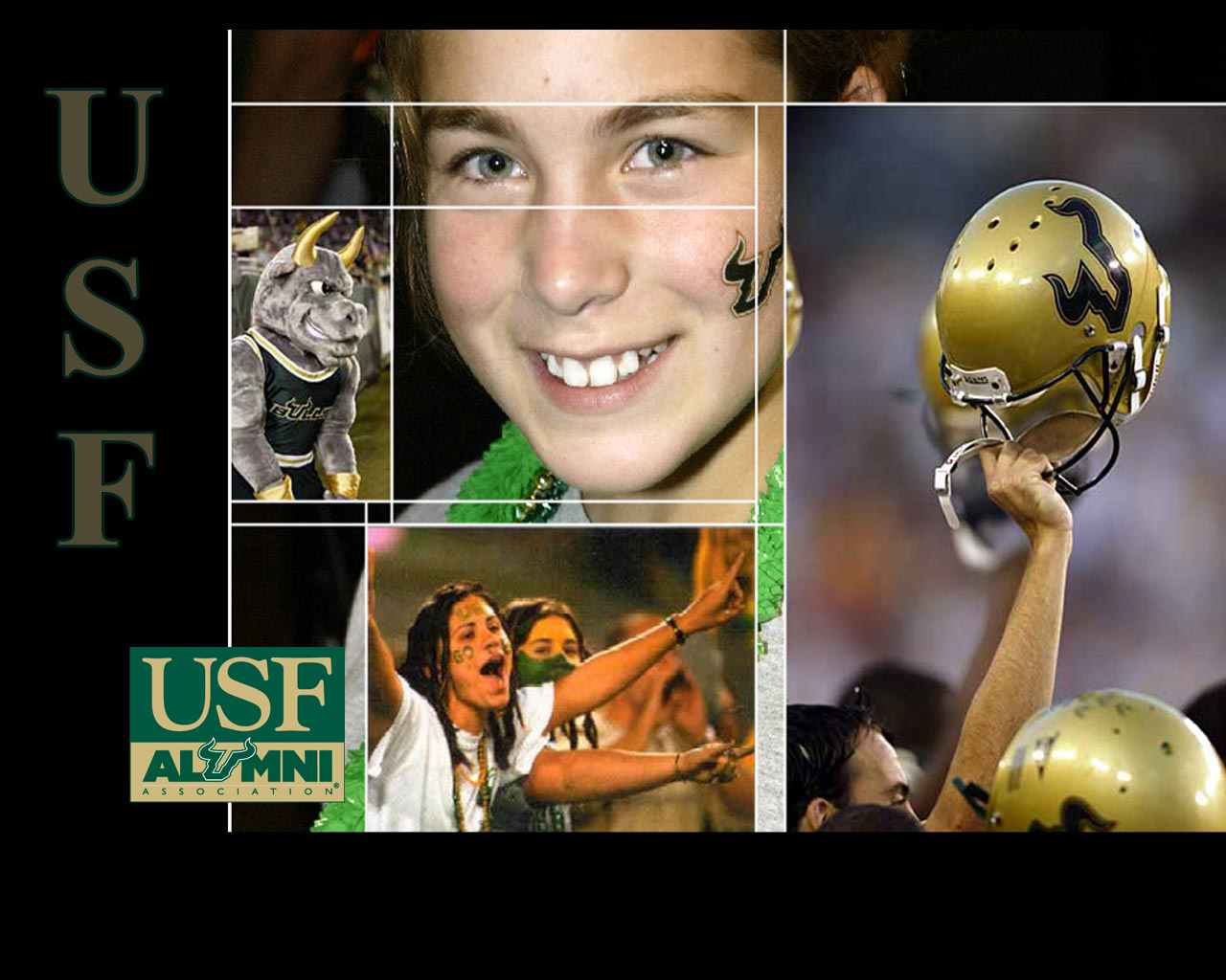 USF Alumni   USF Wallpaper 1280x1024