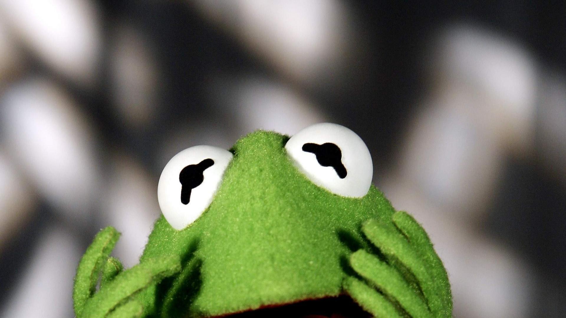 41 Kermit The Frog Wallpaper On Wallpapersafari