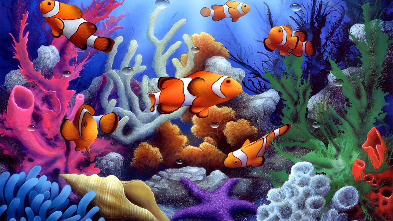 48 Free Fish Wallpaper For Computer On Wallpapersafari