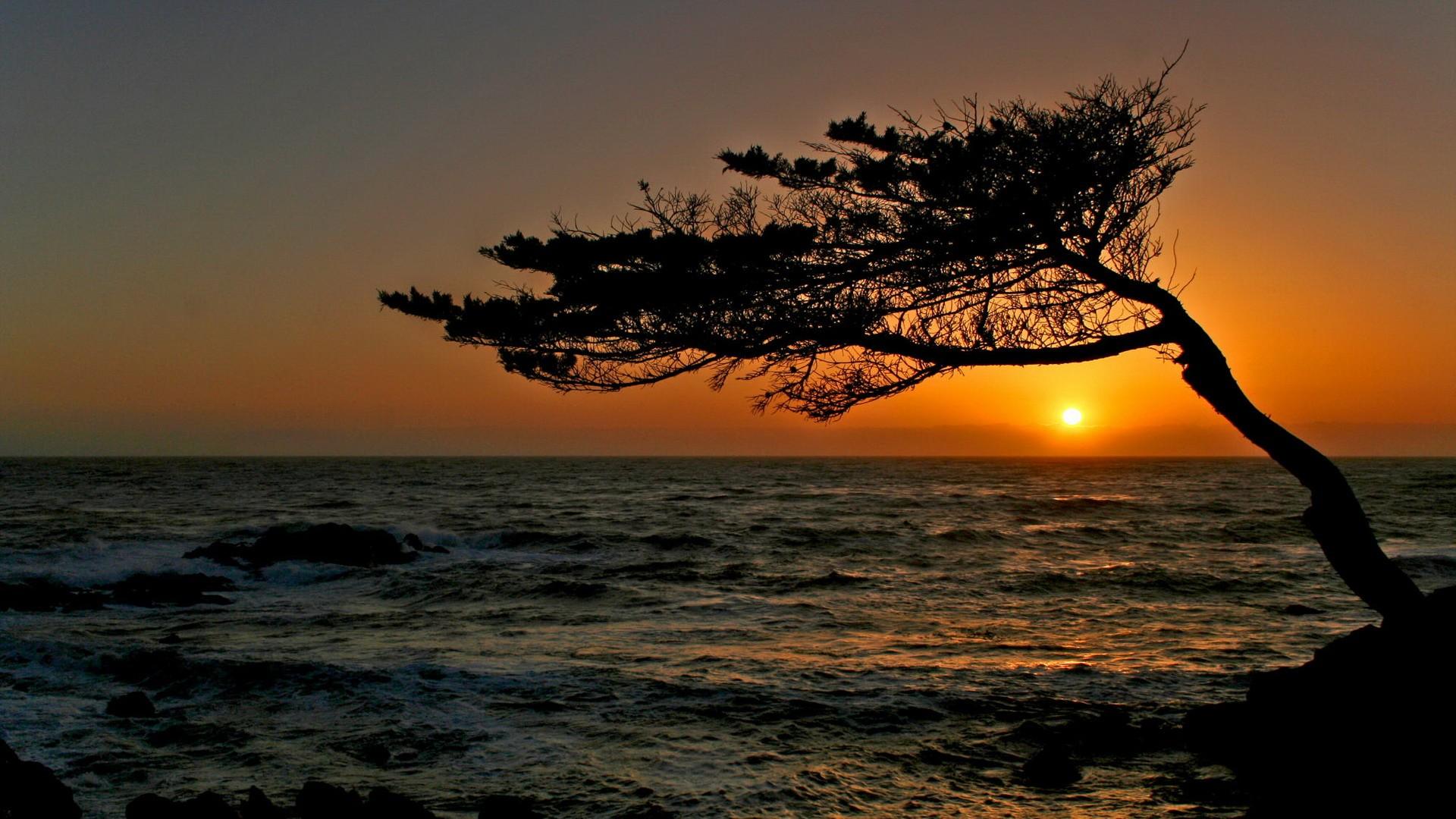 California Sunset Wallpaper - WallpaperSafari