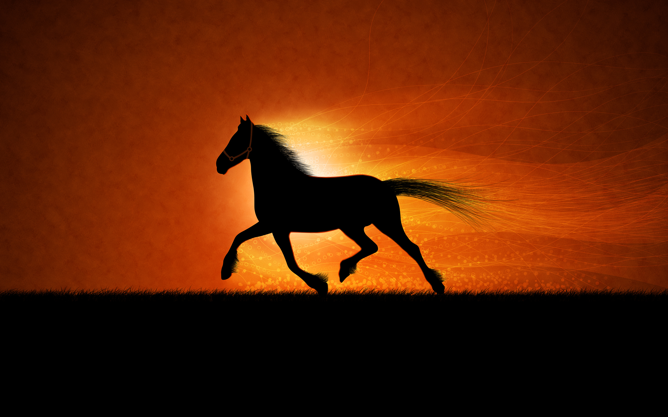 48 Running Horses Wallpaper On Wallpapersafari
