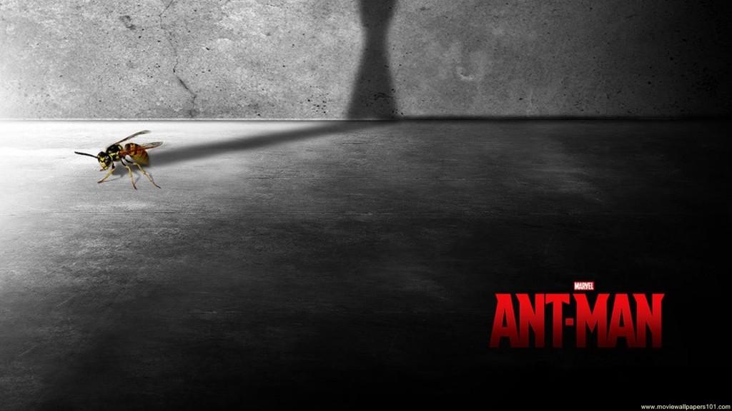 Ant Man 2015 Film Poster HD Wallpaper   Stylish HD Wallpapers 1024x576