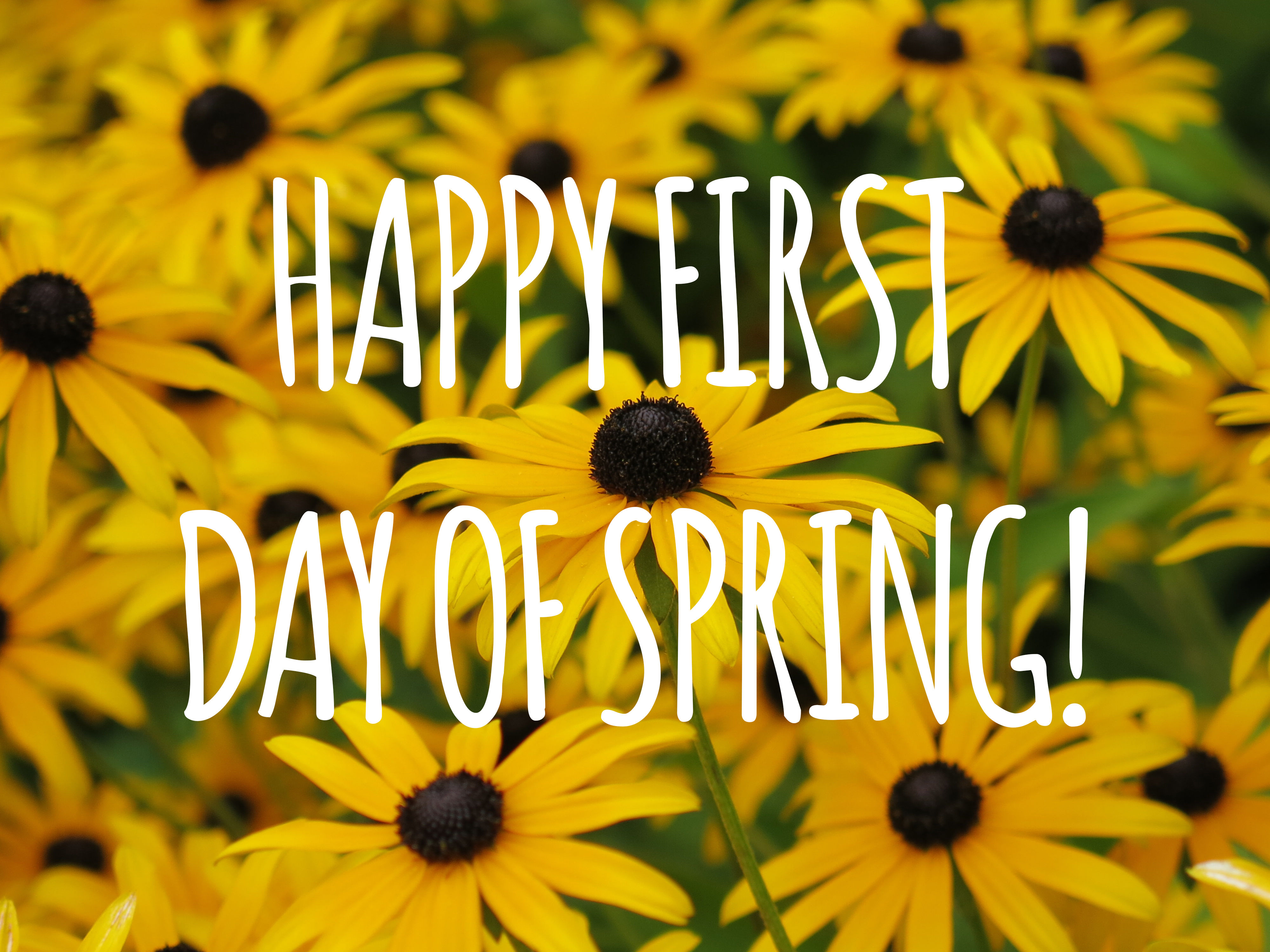 Happy First Day Of Spring Pictures Photos and Images for 4000x3000
