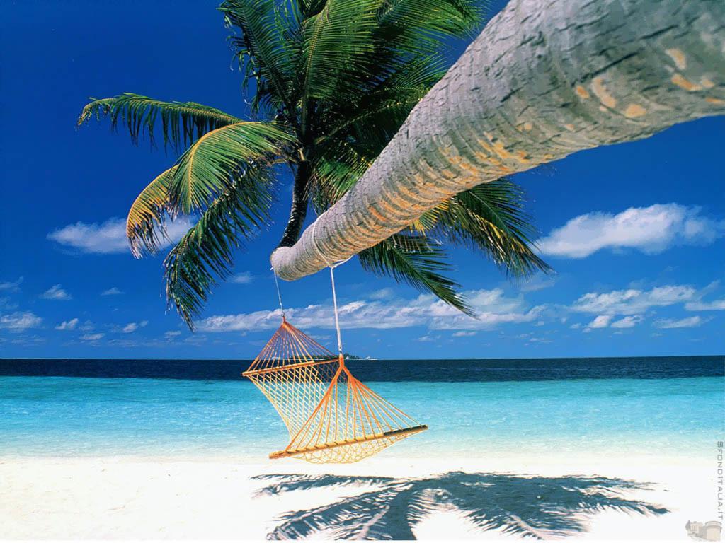 caribbean beach resort 1024x768