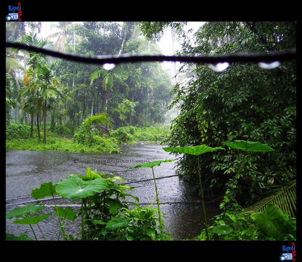 Monsoon Wallpapers Wallpapersafari